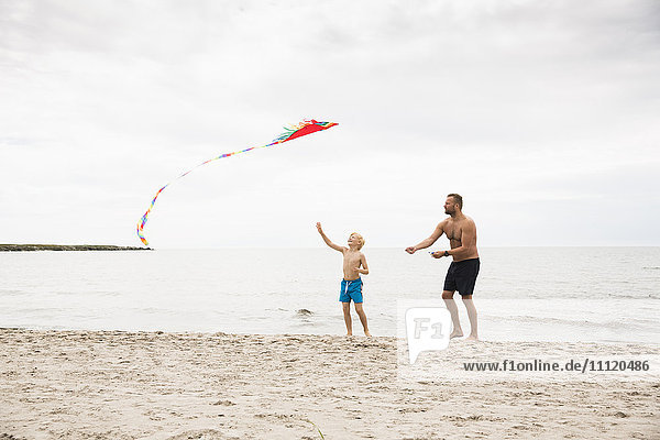 Sweden  Gotland  Shirtless boy (8-9) and mature man with kite at beach