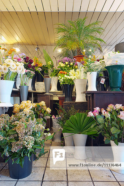 A small florists workshop with vases of fresh cut flowers