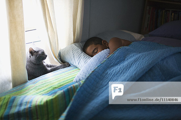 Mixed race boy sleeping in bed with cat