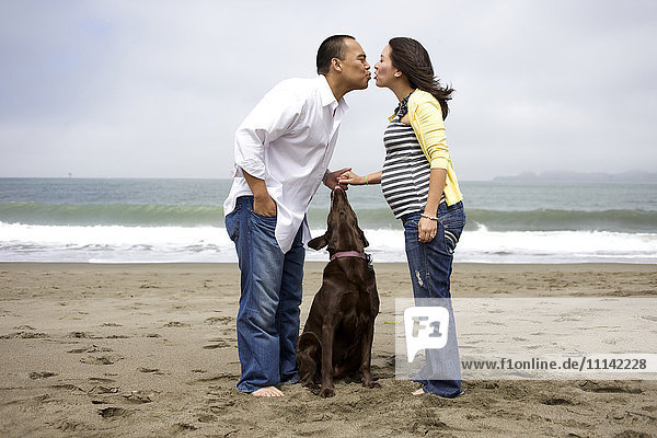 Husband kissing pregnant wife on beach while dog watches
