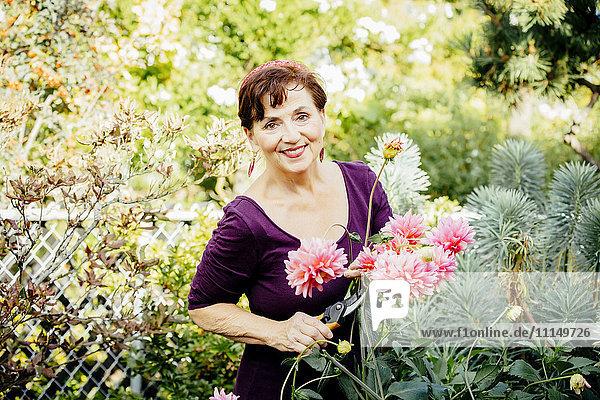 Caucasian woman picking flowers in garden