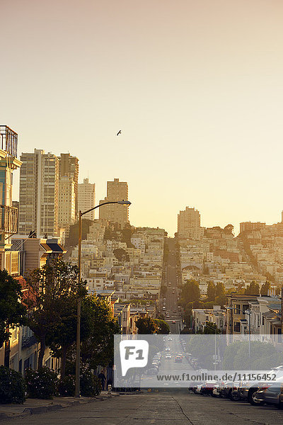 USA  California  San Francisco  view along Union Street on Russian Hill in evening light