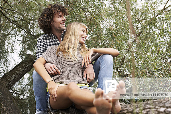 Happy young couple sitting on a tree trunk
