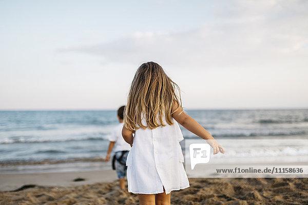 Rückansicht des kleinen Mädchens  das am Strand mit seiner Freundin spielt.