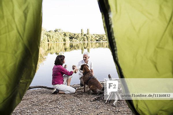 Senior couple camping with dog at a lake