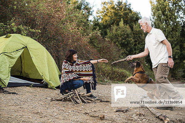 Senior couple with dog at a tent