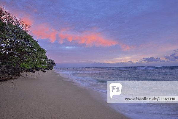 USA  Hawaii  Oahu  Sandstrand bei Sonnenaufgang
