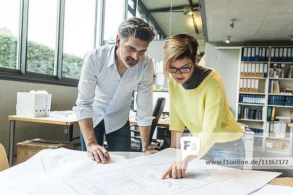 Architektinnen und Architekten diskutieren Grundriss im Büro