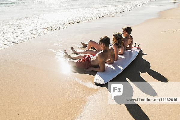 Freunde mit Surfbrett am Meer