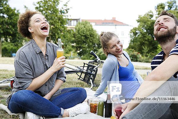 Drei glückliche Freunde trinken im Park