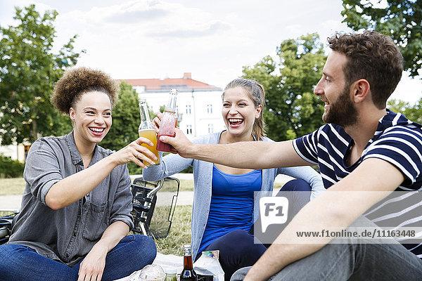 Drei glückliche Freunde klirren im Park.