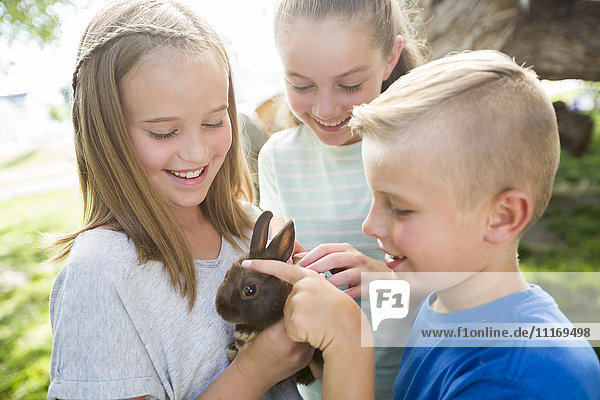 Caucasian boy and girls petting rabbit