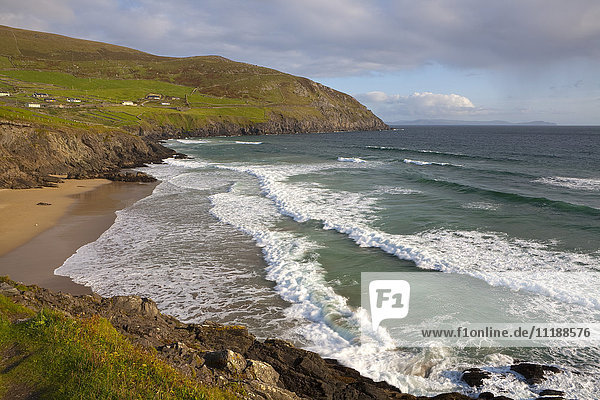 Coumeenoole Beach & Slea Head  Dingle Peninsula  County Kerry  Munster  Republic of Ireland