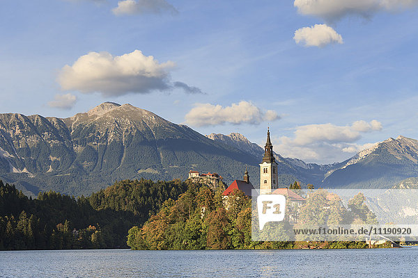Slovenia  Bled  Lake Bled and Julian Alps