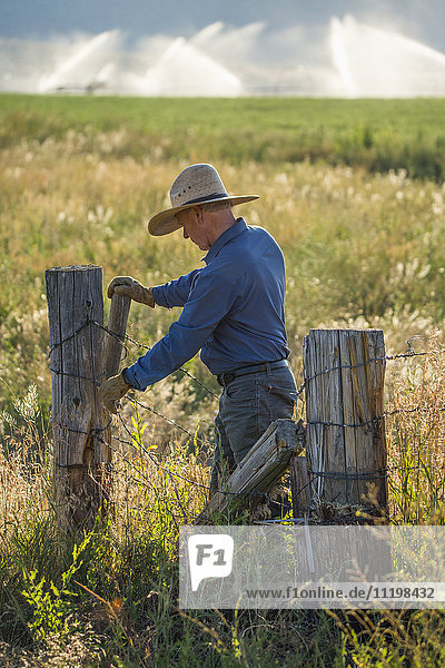 Caucasian farmer repairing barbed wire fence