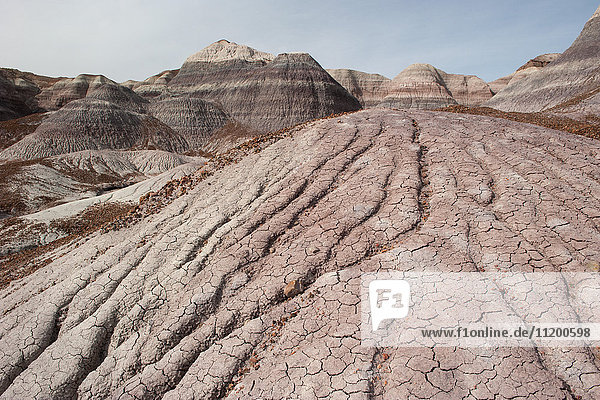 Bemalte Wüstenregion des Petrified Forest National Park  Arizona  USA