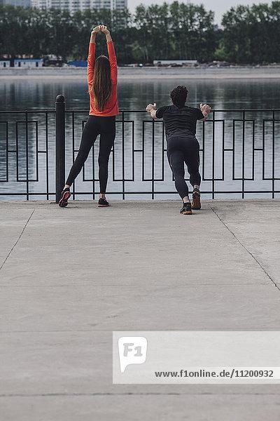 Rückansicht der Menschen auf der Promenade am See