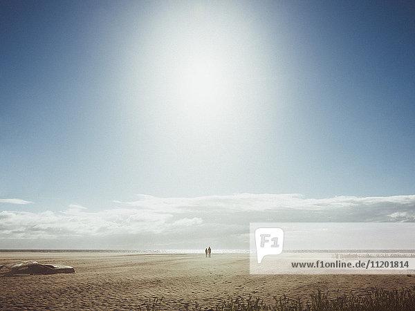 Auto begraben am Strand gegen den Himmel am sonnigen Tag  Venice Beach  Los Angeles  Kalifornien  USA
