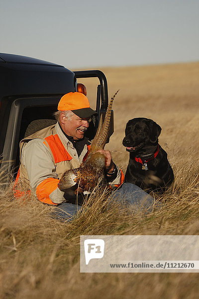 Pheasant Hunter With Lab In Field
