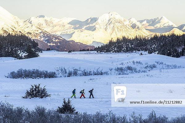 Skiers traveling together up Tincan Mountain in Turnagain Pass  Kenai Peninsula  Southcentral Alaska  USA