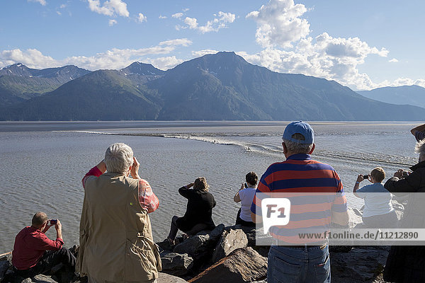A group of people watch a small bore tide pass them by as they watch from a pull off on the Seward Hwy  Southcentral Alaska  USA