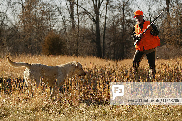 Upland Bird Hunter With Dog