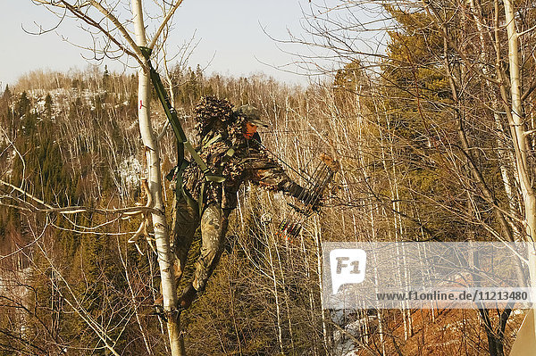 Bowhunter In Tree Saddle Drawing Bow
