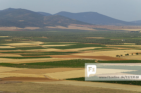 'Landscape of farm fields and mountains in the distance; La Mancha  Spain'