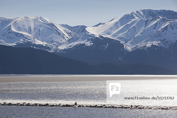 Surfers ride a large bore tide in Turnagain Arm in Summer. Southcentral Alaska. Mile 94 Seward Highway.