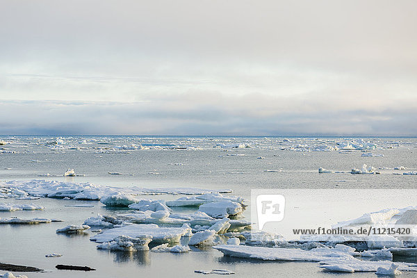'Summer sea ice collects near the shore of the Arctic Ocean  partly cloudy skies in the background; Barrow  North Slope  Alaska  United States of America'