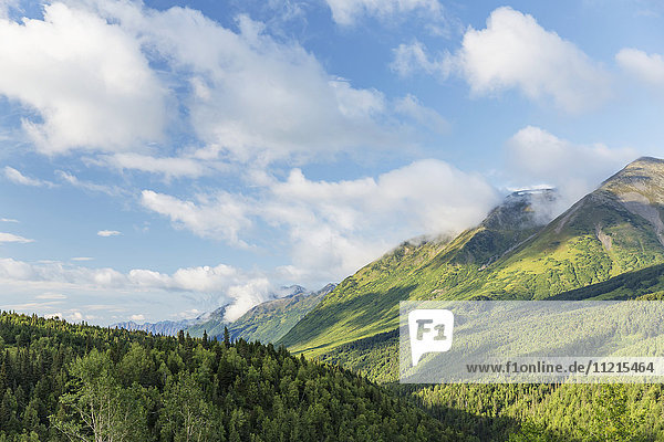 'The lush green hillsides of the Kenai Mountains on a partly cloudy day  seen from the Seward Highway in summertime  south-central Alaska; Anchorage  Alaska  United States of America'
