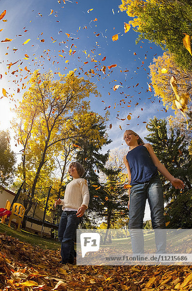 'Sisters standing in a pile of leaves in autumn and throwing leaves into the air against a blue sky; Regina  Saskatchewan  Canada'