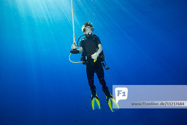 A diver hanging on a line at 15 feet for a decompression stop before surfacing; Hawaii  United States of America