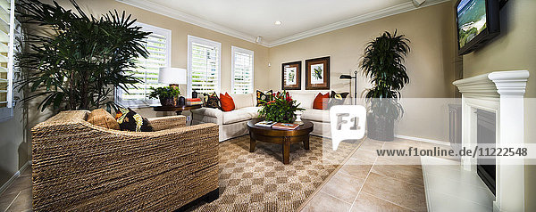 Armchair and sofa in contemporary living room  Azusa  California  USA
