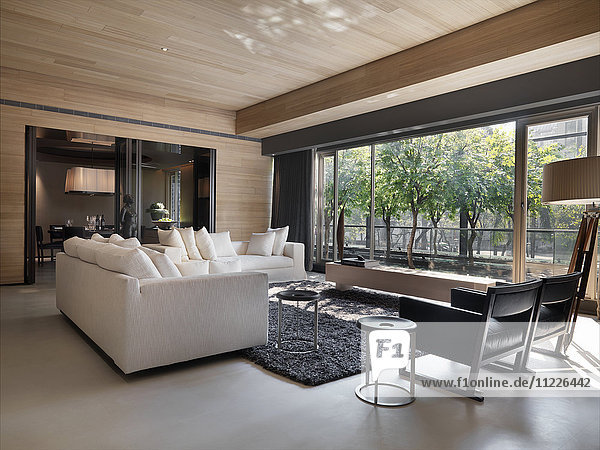 Living room with black and white modern furniture