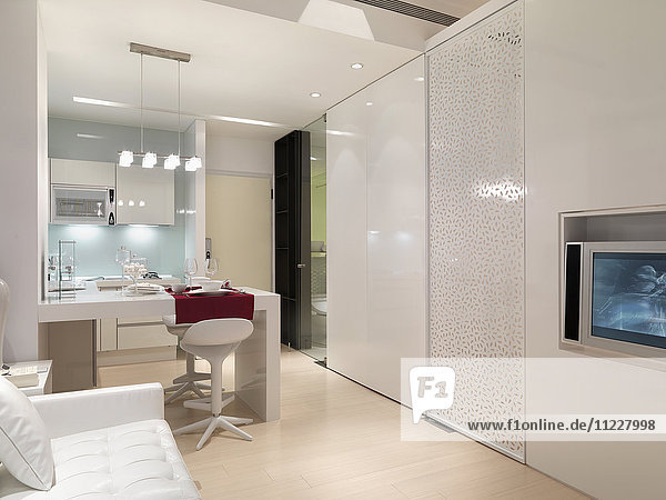 Living and kitchen area of modern interior