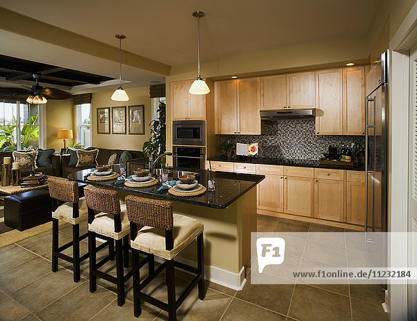 Large Contemporary Kitchen with Island