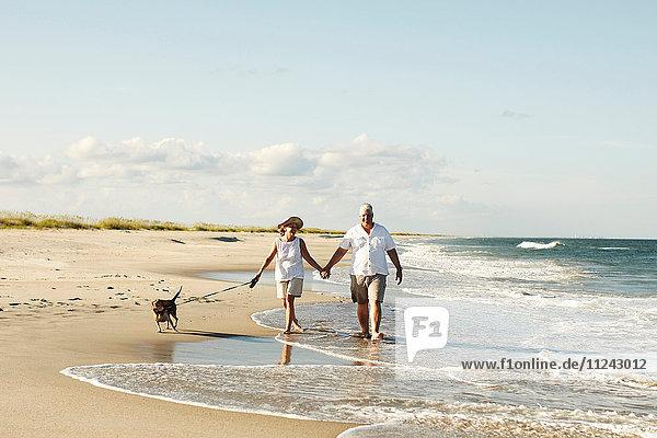 Älteres Ehepaar geht mit Hund am Strand spazieren und hält sich an den Händen