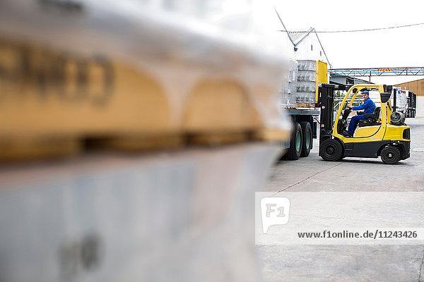 Gabelstaplerfahrer lädt Paletten in Verpackungsfabrik auf Lkw