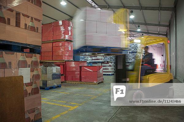 Gabelstaplerfahrer beladen Palette im Lager der Verpackungsfabrik