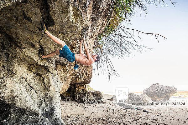 Male free climber climbing rock overhang on Pandawa Beach  Bali  Indonesia