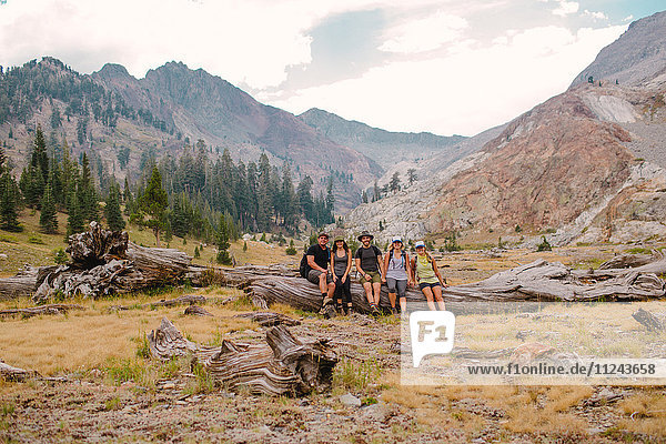 Gruppe von Freunden sitzt auf einem Baumstamm  Mineral King  Sequoia National Park  Kalifornien  USA