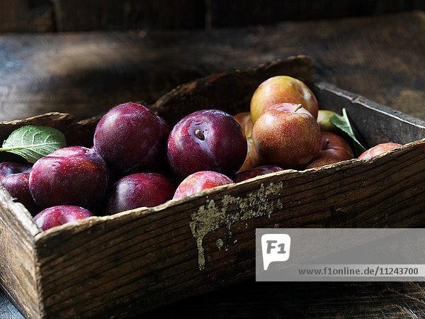Frisches Bio-Obst  Pflaumen und Äpfel