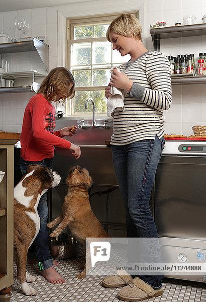 Mutter und Tochter in der Küche  Tochter beim Füttern von Haushunden eine Leckerei