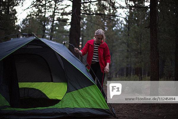 Junge Frau bereitet Zelt im Wald in der Dämmerung vor  Mammoth Lakes  Kalifornien  USA