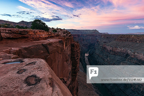 Toroweap Overlook  Grand Canyon  Toroweap  Utah  USA