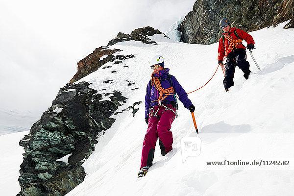 Bergsteiger beim Abstieg vom schneebedeckten Berg  Saas Fee  Schweiz