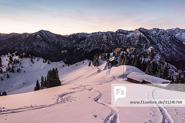 Schneepisten am Teufelstattkopf im Morgengrauen  Oberammergau  Bayern  Deutschland