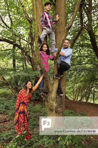 Familienportrait im Wald  Vater und zwei Kinder klettern auf Baum