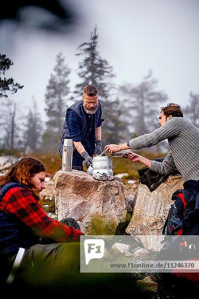 Wanderer kochen im Park  Sarkitunturi  Lappland  Finnland